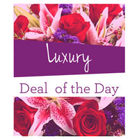 Lux_Deal