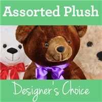 Designer-Choice-tile-for-Assorted-Plush