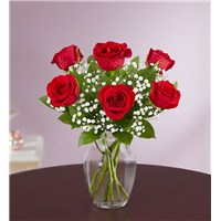 6-red-rose-in-clear-vase-with-purple-background