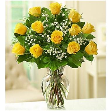 1 Dozen Classic Yellow Rose Vase Flowerama Waterloo