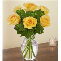 Yellow-6-rose-flowerama